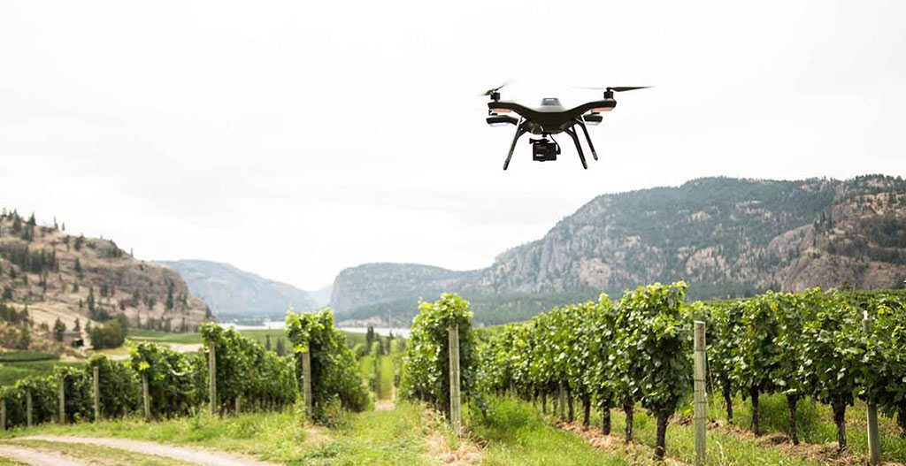 Aerial Photography for Wineries