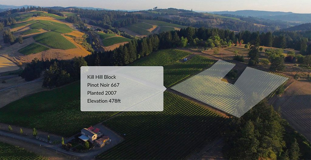 Interactive Vineyard Map For Wineries Wordpress Website
