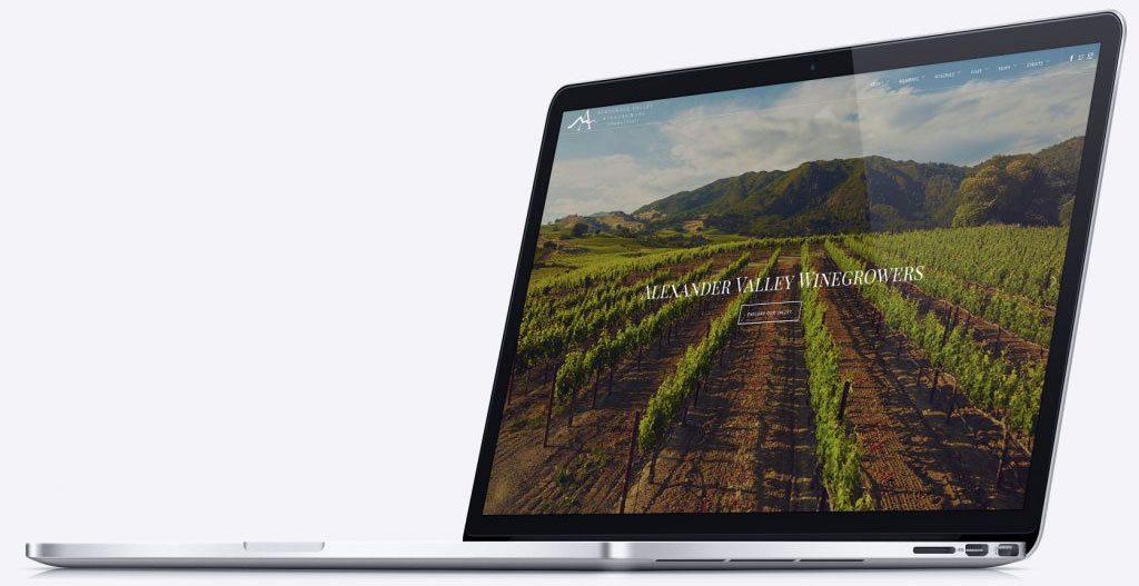 Winery Vineyard Website Design Company