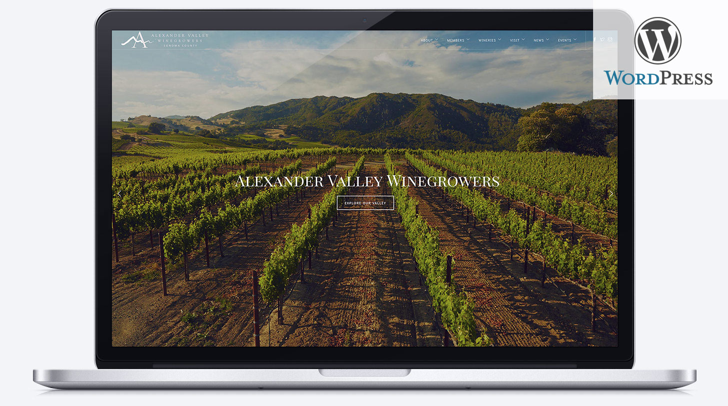 Wordpress websites for wineries