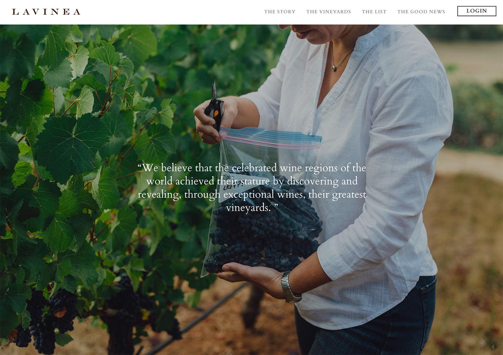 Premium Wine Website Design