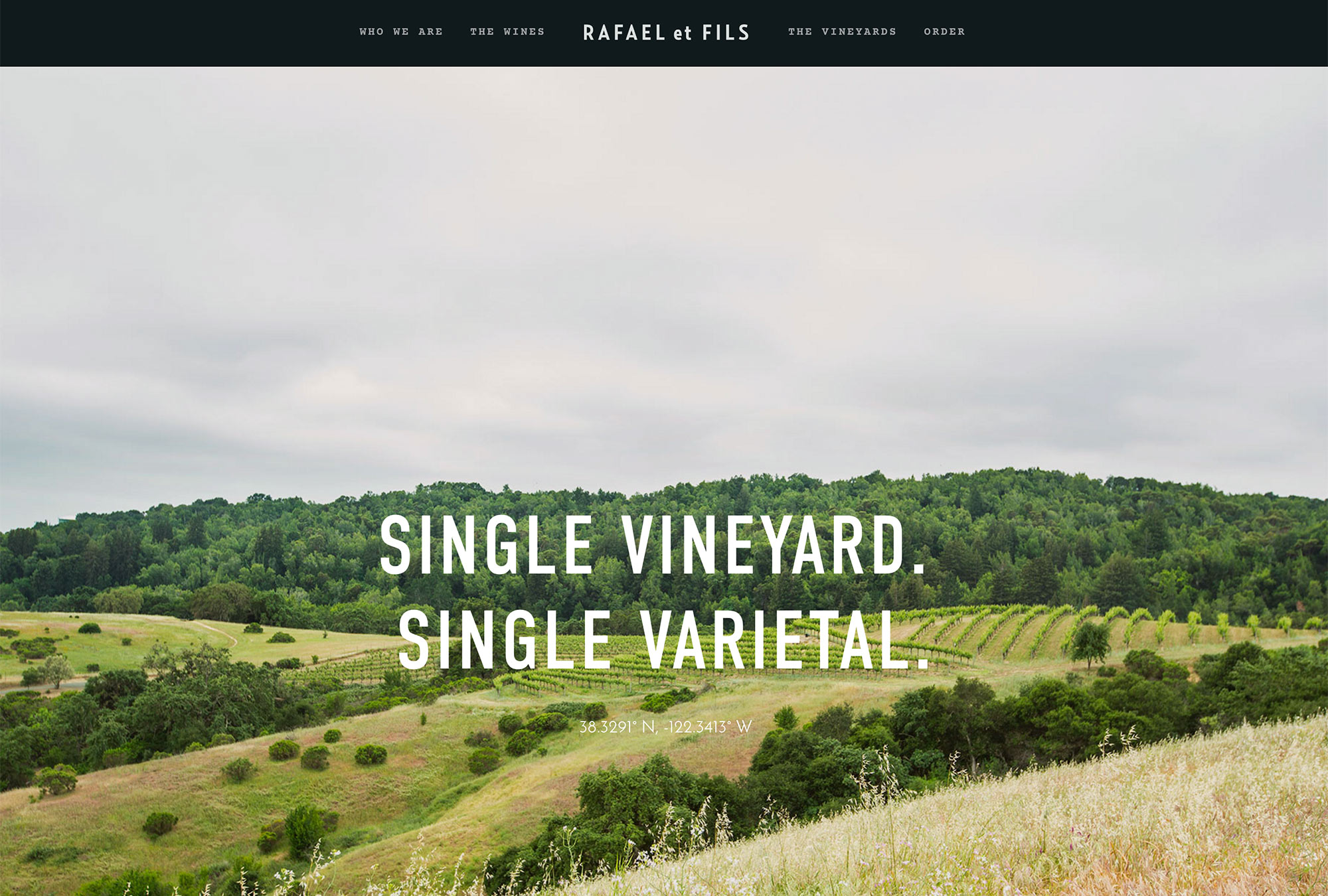 Top Website Design for Wineries