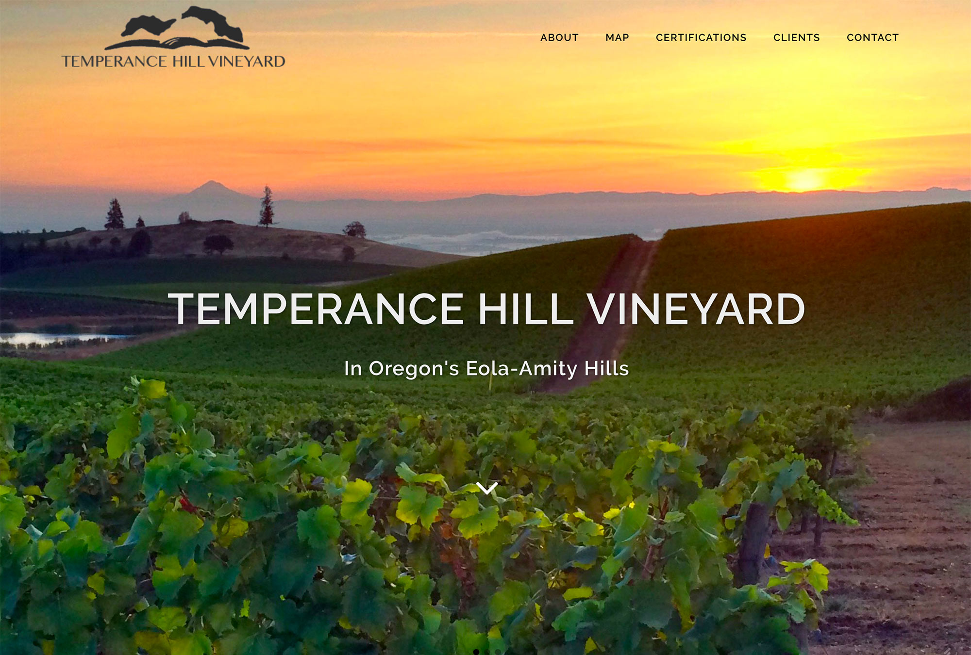 Oregon Vineyard Website Designer