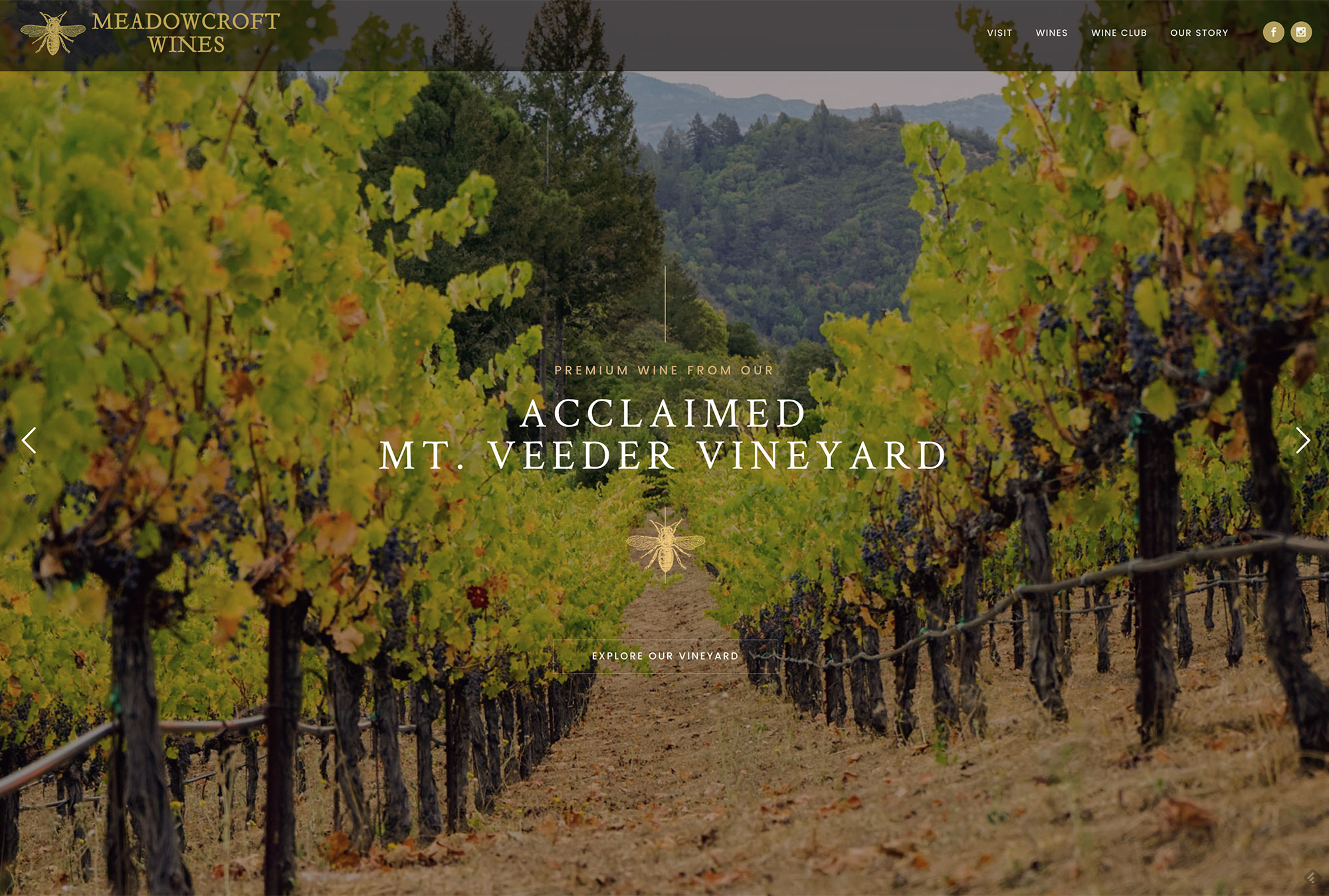 Best winery website design