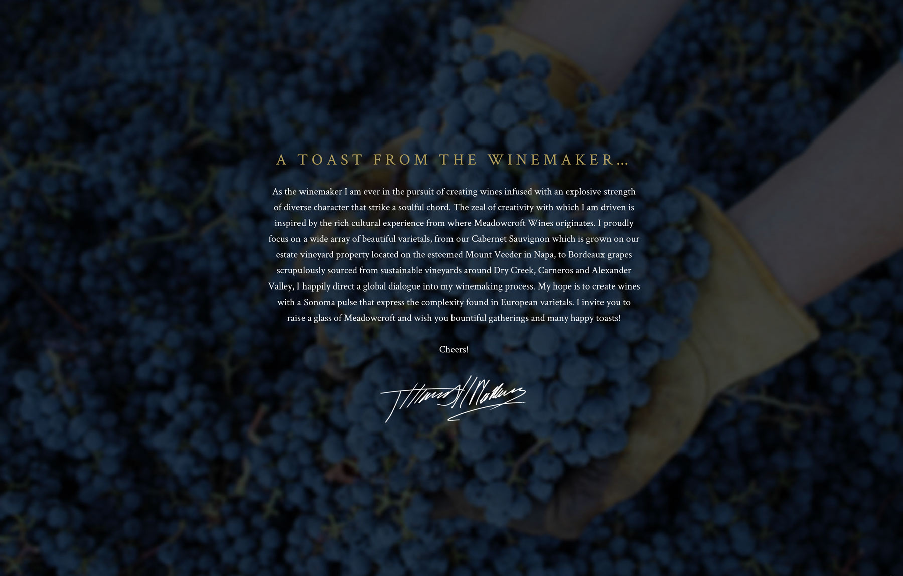 Top winery website design