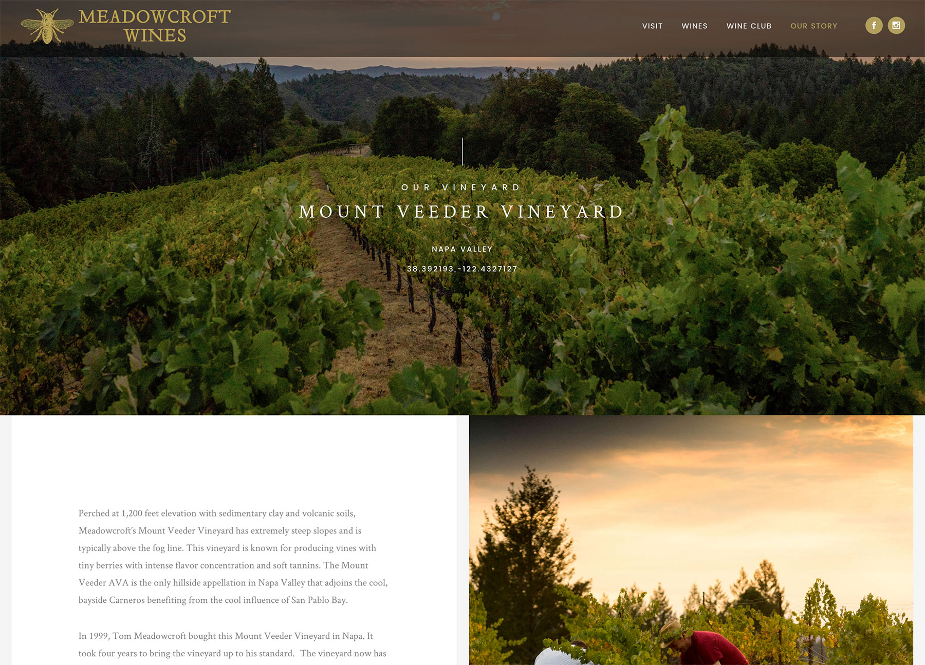 Winery Website Development Sonoma