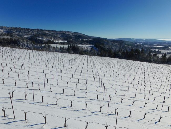 Aerial video for Wineries Oregon