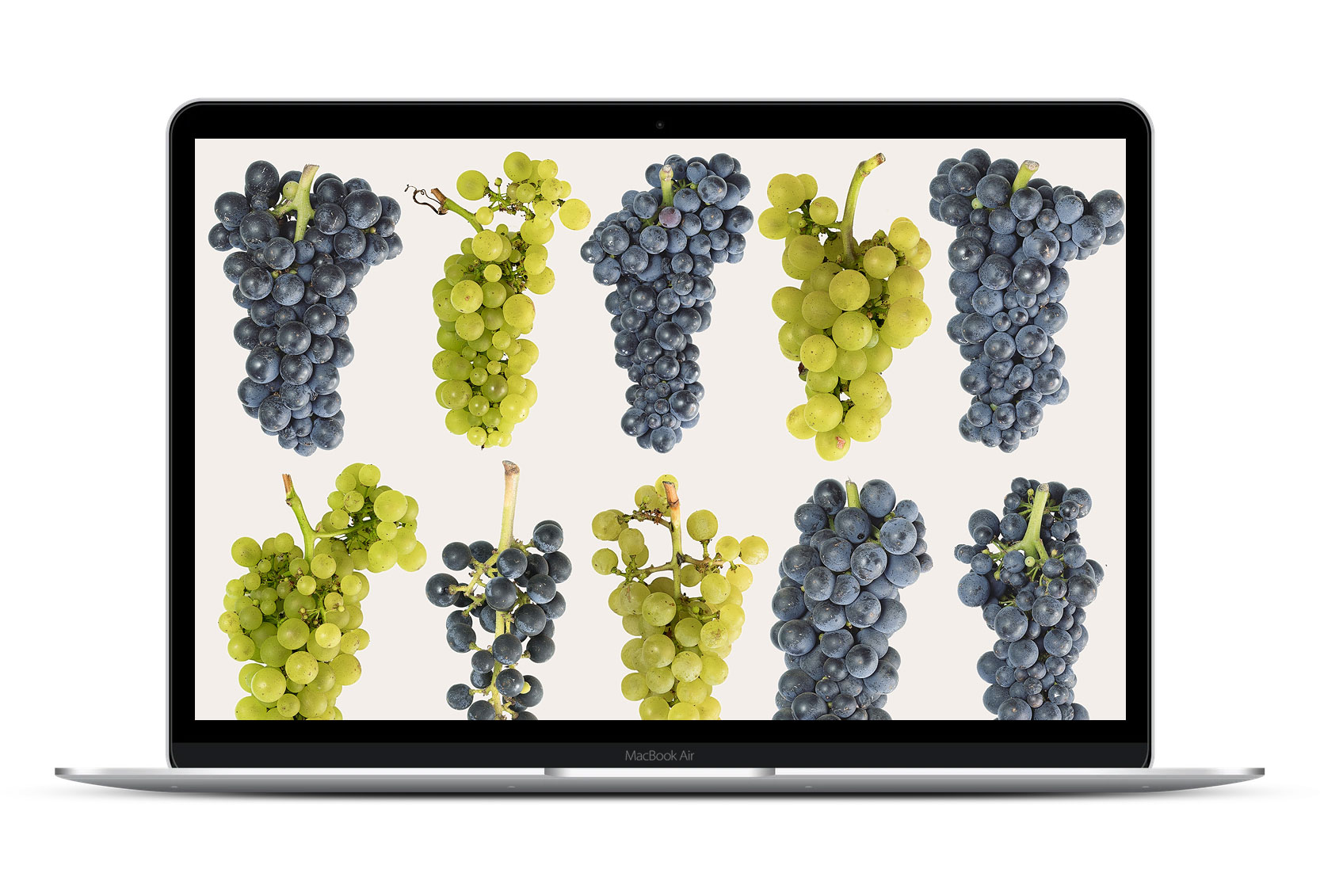 Best winery websites 2020