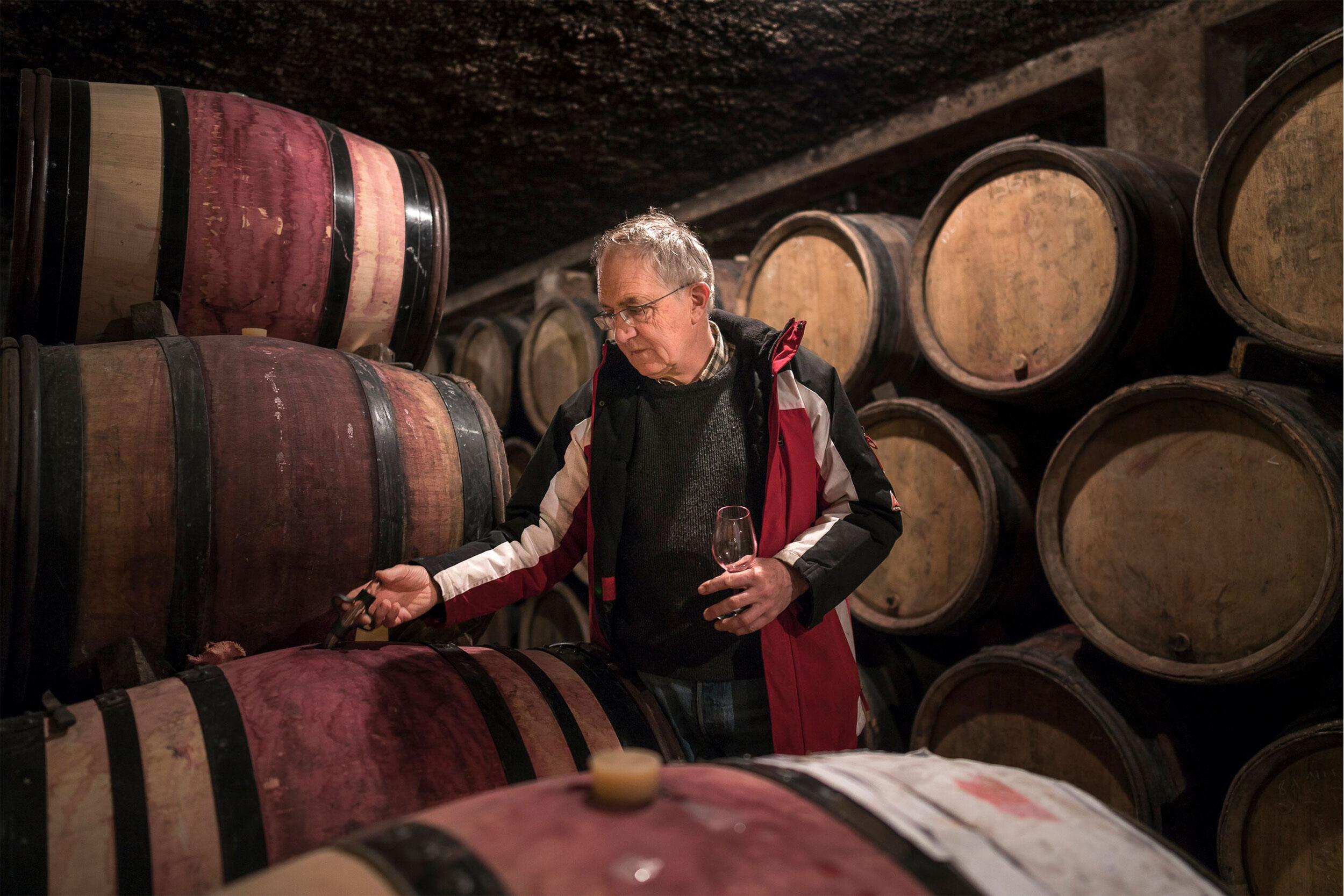 Winemaker in cellar with barrels