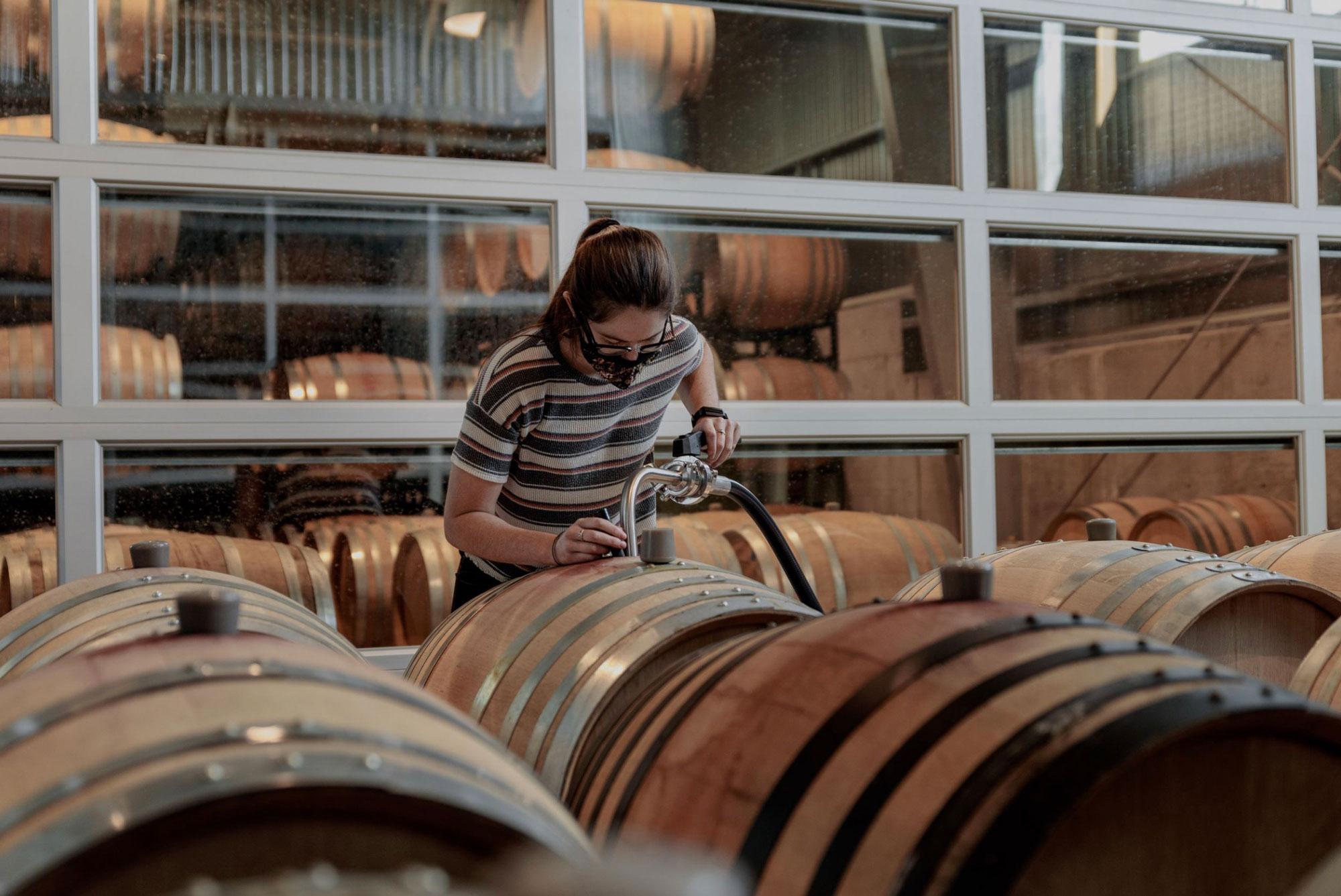 Cellar hand filling barrel