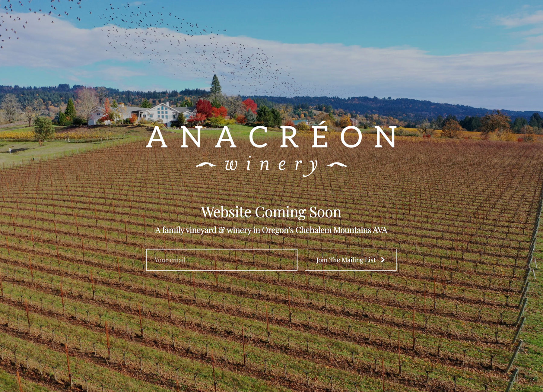 Anacréon Winery coming soon website