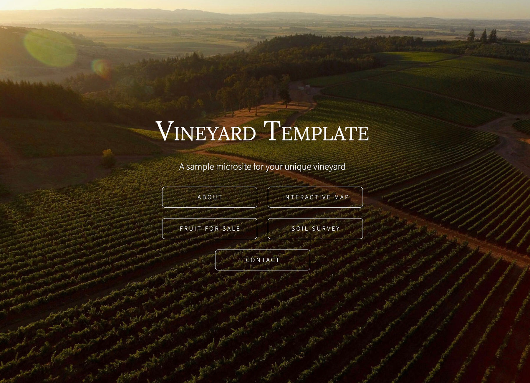 Template example of a vineyard microsite